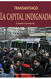 TRANSANTIAGO, LA CAPITAL INDIGNADA